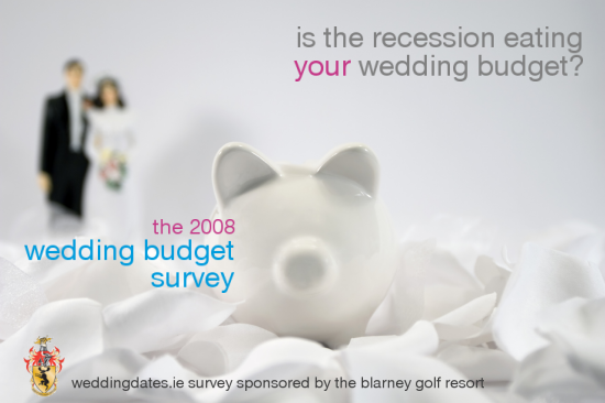 The 2008 Wedding Budget Survey