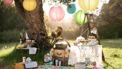 Hen Party Ideas: Picnic Time
