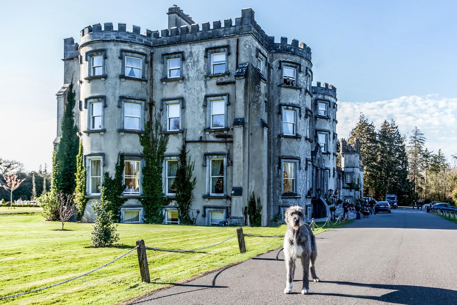 Ballyseede Castle Hotel