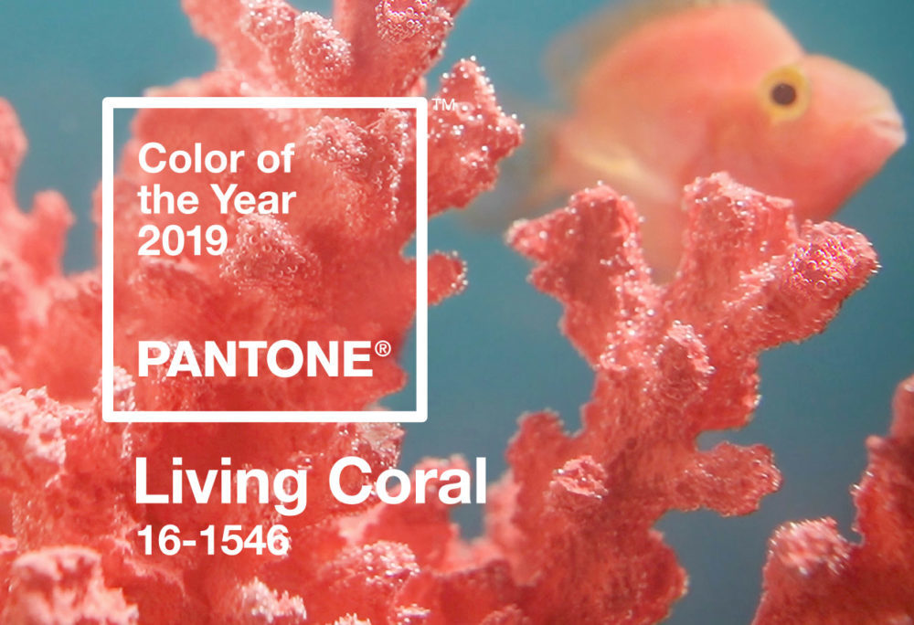 pantone-color-of-the-year-2019-living-coral-banner-mobile-1000x684